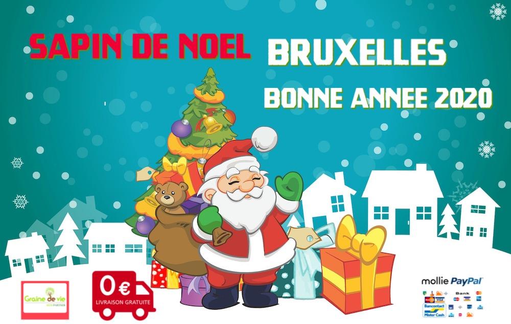 Achetez Votre Sapin De Noël Nordmann épicéas à Bruxelles